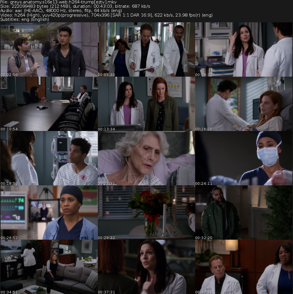 Grey's Anatomy Movie